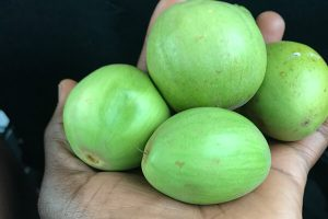 shan green nuts